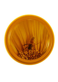 TO 82 méhecske sárga lapka